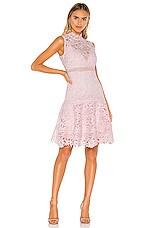 Bardot Elise Lace Dress in Washed Pink