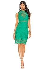 Bardot Eleni Lace Dress in Greenlake