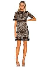 Bardot Theodora lace Dress in Black