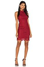 BB Dakota Cherie Dress in Pomegranate