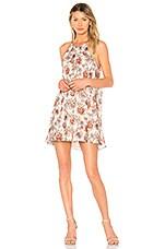 BB Dakota Alissa Dress in Dew