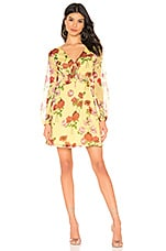 BB Dakota Botanical Bae Dress in Yellow Iris