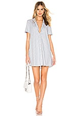 BB Dakota Stripe A Personality Dress in Chambray