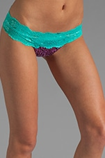 Lady Lace Bottom in Purple Turquoise