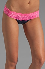 Lady Lace Bottom in Navy Pink