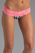Lady Lace Bottom in Zebra