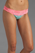 Sugar Rush Lady Lace Bottom in Turquoise