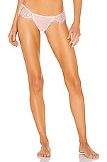 BLUEBELLA Marina Thong in Pale Pink