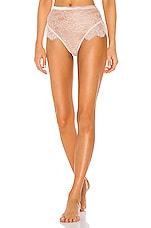 BLUEBELLA Tallie High Waist Brief in Rose Dust