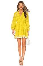 HEMANT AND NANDITA Sol Mini Dress in Yellow