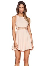 Lace Insert Dress in Blush