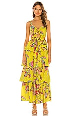 Banjanan X REVOLVE Aster Dress in Birdie Print Buttercup