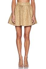 Mini Skirt in Gold