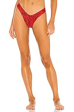Blue Life Rico Bikini Bottom in Cherry Cheetah
