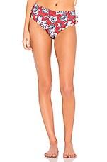 Boamar Gotti Bikini Bottom in Red Flower