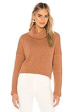 Bobi Soft Sweater Knit Turtleneck in Rust