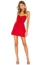 BROGNANO Lace Mini Dress in Red