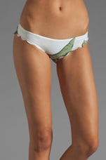 // STONE_COLD_FOX Nanuya Bottom in Palm Print