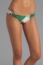 // STONE_COLD_FOX Basil Bottom in Palm Print