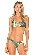 BEACH RIOT x REVOLVE Tori Bikini Top in Palm