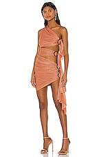 Bronx and Banco X REVOLVE Gaia Mini Dress in Brick