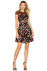 Bronx and Banco Embroidered Floral Mini Dress in Multicolor