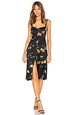 Capulet Sunny Midi Dress in Fruit Bee Print