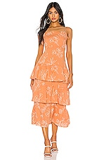 Capulet Quinn Tiered Dress in Oleander Print