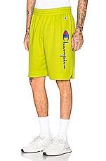 Champion Shorts in Green