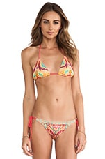 Tropicalia Triangle Top in Pink Multi