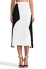 Pleated Skirt in Black & White