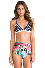 Tobacco Fields Bathing Suit Top in Multi