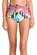 Tobacco Fields Bathing Suit Bottom in Multi