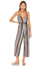 Camila Coelho Reilly Jumpsuit in Multi Stripe