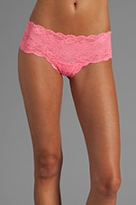 Never Say Never Hottie Hot Pant in Neon Rose