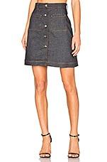 Carven Mini Skirt in Indigo