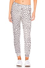 Chaser Lounge Jogger in Animal Print