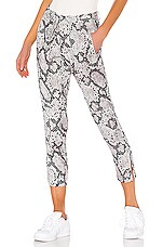 Chaser Cropped Drawstring Side Slit Panel Pant in Snake