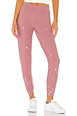 Chaser Pinky Stars Sweatpant in Glam