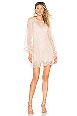 Chrissy Teigen x REVOLVE Phulay Sunset Dress in Champagne