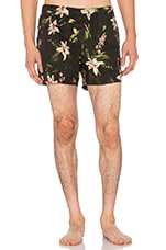 BOARDSHORT BOTANICAL