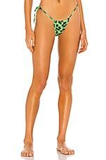 DANIELLE GUIZIO Leopard String Bikini Bottom in Green