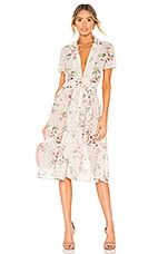Divine Heritage Collared Button Up Dress in Ivory