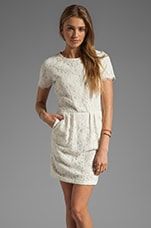 Dolce Vita Sarus Raised Lace Short Sleeve Dress in Cream