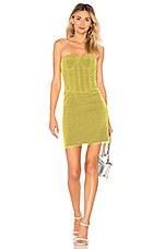 Diane von Furstenberg Corset Dress in Chrome Yellow & Cardamom