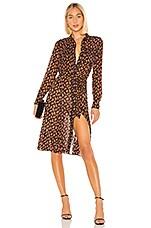 Diane von Furstenberg Andi Dress in Tie Paisley Black