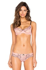 SOUTIEN-GORGE ROSEMARY