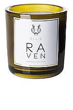 Ellis Brooklyn Raven Terrific Scented Candle in Raven