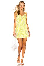 Endless Summer Teenie Mini Dress in Neon Zebra