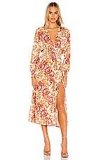 RESA Jade Dress in Rust Floral